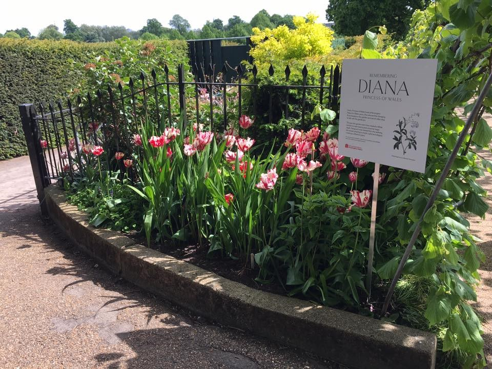 Královský Londýn – po stopách Lady Diany - Velká Británie