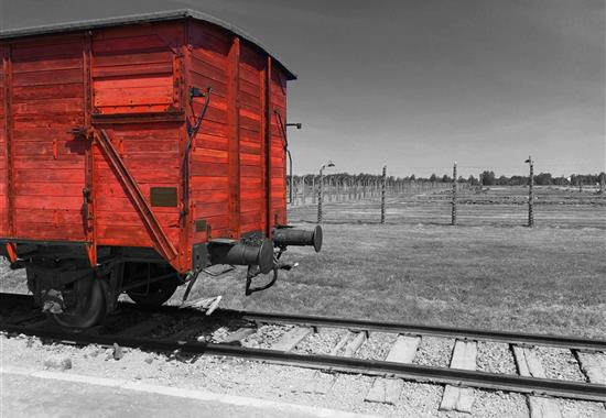 Koncentrační tábor Osvětim a solný důl Wieliczka - Polsko